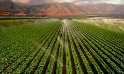 Codevasf promove evento sobre reutilização da água para  agricultura