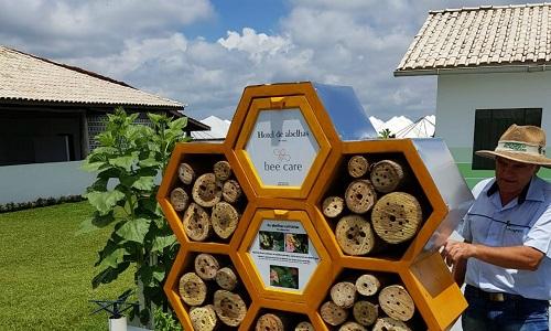 Agrishow 2019: hotel de abelhas e app que mapeia colmeias ajudam a evitar extinção de polinizadores