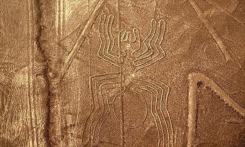 Cientistas trazem respostas sobre misteriosas aves gigantes de Nazca, no Peru