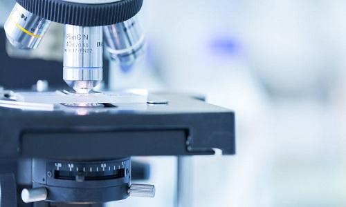 Cientistas resolvem um dos principais paradoxos do surgimento da vida humana