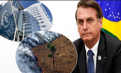 Juristas preparam ação contra Bolsonaro no Tribunal Penal Internacional por ecocídio