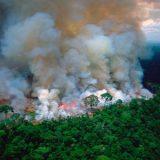 Primeiro-ministro do Canadá diz  que é preciso agir pela Amazônia