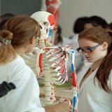 Future-se vai permitir revalidação do diploma de medicina na rede privada, diz secretário do MEC