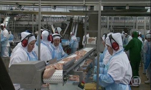 Exportações brasileiras de carne de frango crescem 5,8% até julho