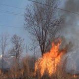 Incêndio atinge vegetação da Serra do Mimo, oeste da Bahia