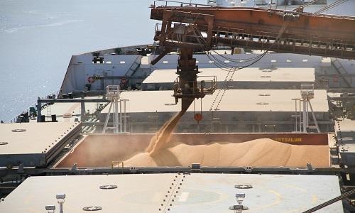 Exportações do agronegócio brasileiro caem 3,4% em julho