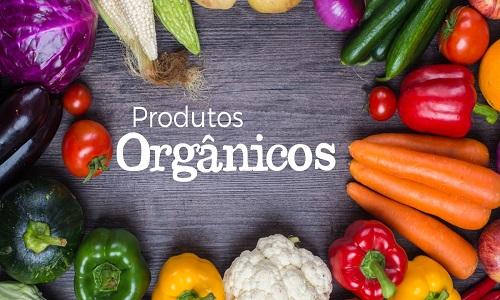Pesquisa aponta que 19% dos brasileiros consomem itens orgânicos