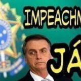 Impeachment de Jair Bolsonaro pelo crime de Ecocídio/ Por Sérgio Jones