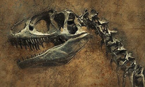 Fósseis de dinossauro são descobertos na Tailândia.