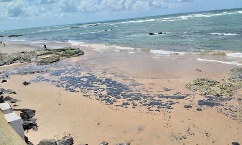 Óleo volta a contaminar praias de Salvador.