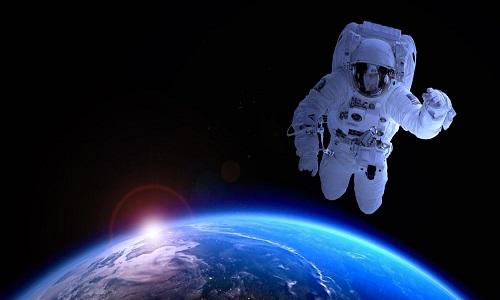 Combinar genes humanos com os de tardígrados seria o futuro dos astronautas?