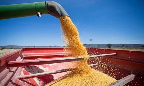 Exportações do agronegócio são recordes, mas faturamento externo cai.