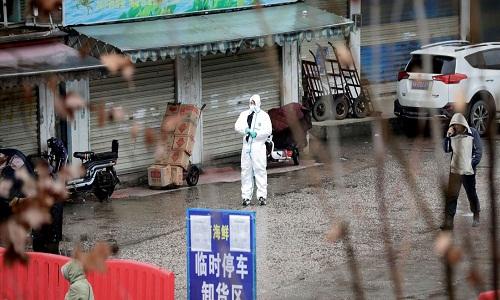 Mercado de frutos do mar em Wuhan não foi origem do coronavírus, dizem cientistas
