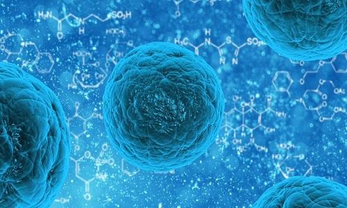 Cientistas descobrem no Brasil vírus com 90% de DNA desconhecido