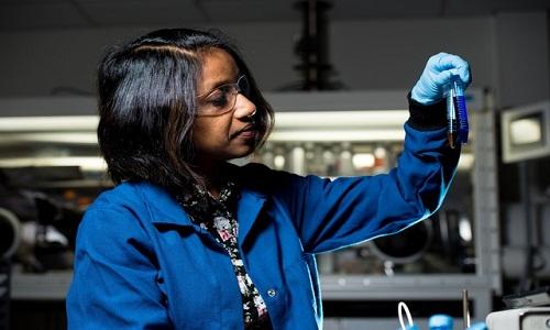 Mulheres são 40% dos pesquisadores do Brasil que declaram ter doutorado nas 5 maiores áreas de conhecimento