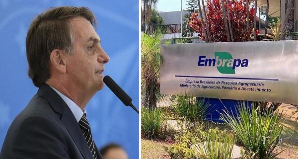Bolsonaro aparelha Embrapa com ruralistas e inicia processo de desmonte de centros de pesquisa
